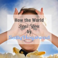 Episode 17:  How the World Sees You by Sally Hogshead