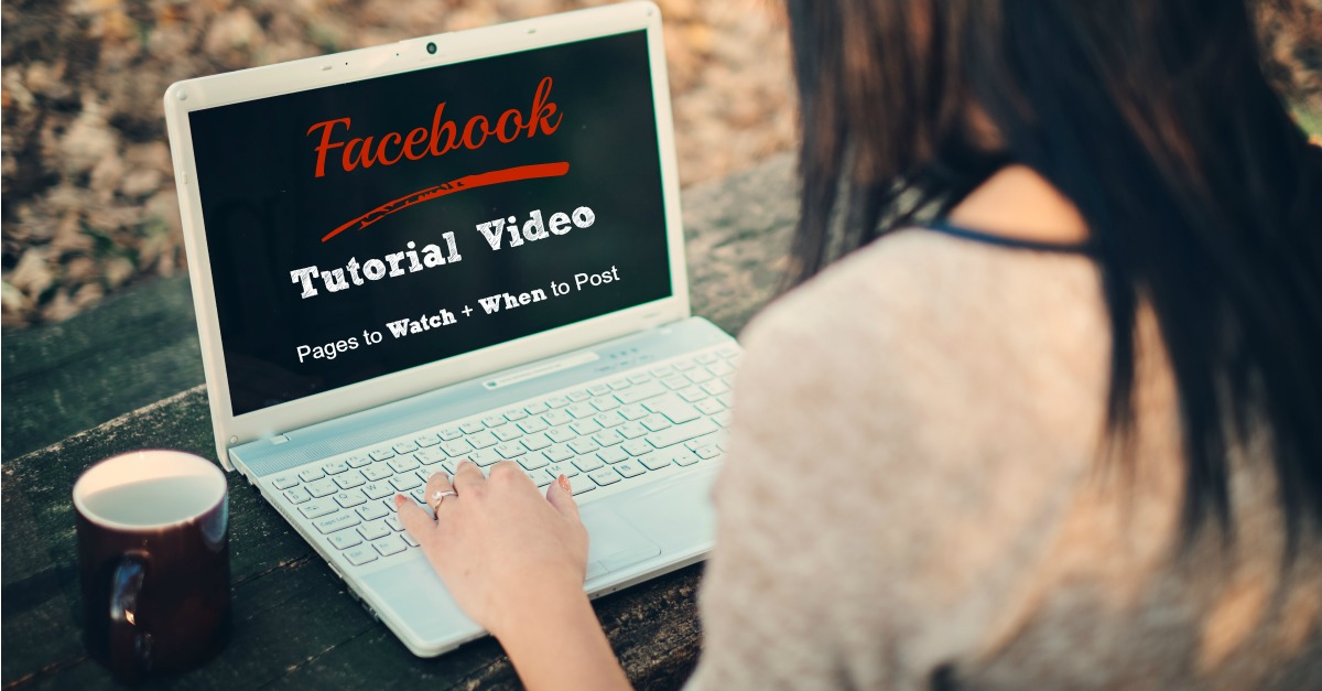 Facebook pages and ads and youtube video tutorials.