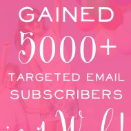 How we Gained 5,000+ Targeted Subscribers in One Week!