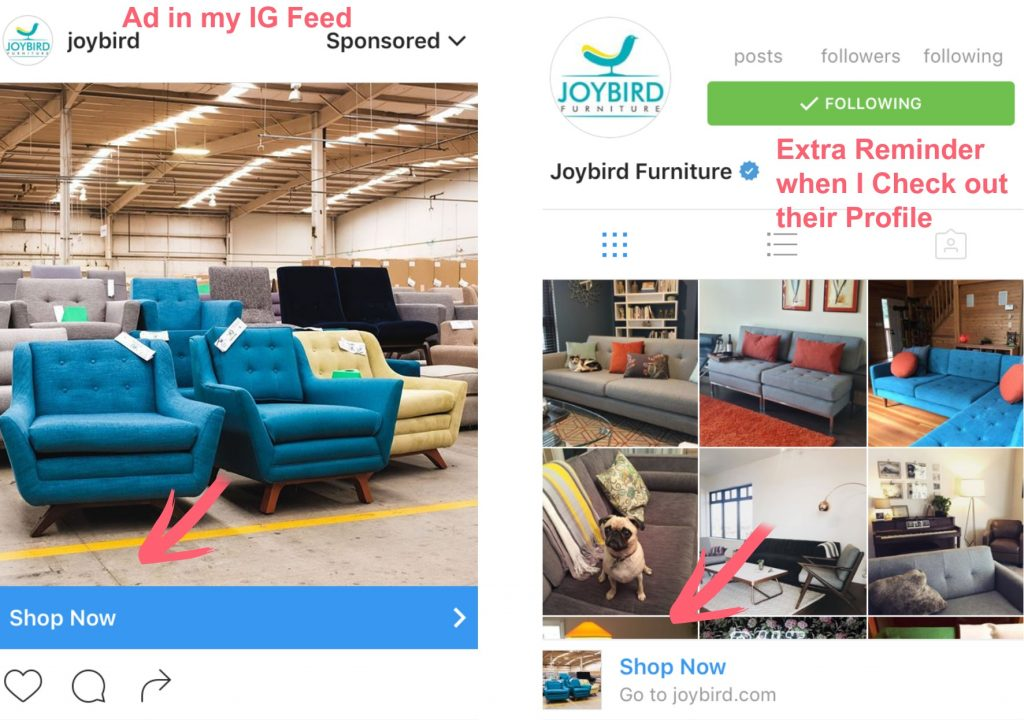 Instagram Ad Example plus special call to action bars and profile reminders